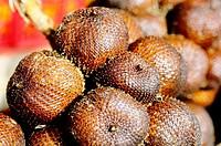 Fruits. Bali. Indonesia