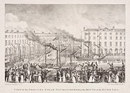 Lithograph after a sketch by S Hemming (engineer) showing jubilant crowds on the quayside of a dock watching steamships. The scene possibly represents...