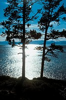 Overlooking Lake Tahoe, California (scenic)
