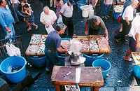 Open air fish market. Catania. Sicily. Italy