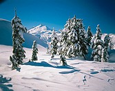 Winter on Kulshan Ridge. Mount Baker in the distance. North Cascades. Washington. USA.