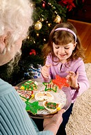 Grandmother and child with Christmas cookies