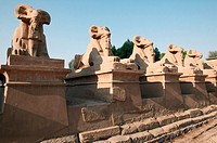 Ram statues guard the entrance to Karnak temple. Luxor, Egypt