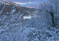 panorama under the snow, capranica prenestina, lazio