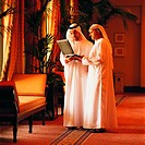 Meeting of Arab businesspeople (thumbnail)