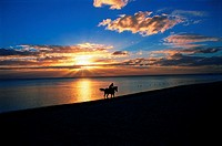 Horseriding on the beach with sunset, Mauritius