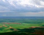Sunlight and shadows on the Palouse region wheat fields from Steptoe Butte. Whitman County, Eastern Washington. USA