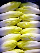 Endives. La Boquer&#237;a market. Barcelona. Spain