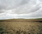 Moorland. Photographed at Widdybank Fell in County Durham, northern England.