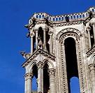 Laon, Kathedrale/ Turmdetail, Rinder