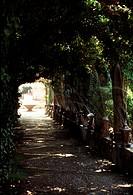 Son Alfabia/ Gartenanlage 5