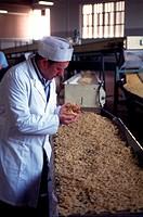 italy, bologna, pasta factory corticella