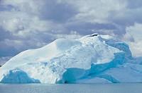 argentina, patagonia, upsala glacier