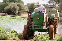 Farmer spraying green beans crops with a tractor. Tarragona province, Catalonia, Spain