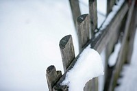 Snow on a fence (thumbnail)