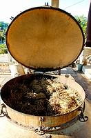 Lavender distillery, Valensole plateau. Alpes de Haute-Provence, Provence, France