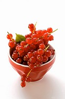 Redcurrants in bowl