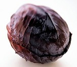 Red Cabbage (thumbnail)