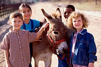 Portrait of a group of children standing with a donkey