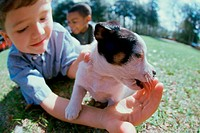 Close-up of a boy holding his puppy