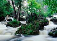 Inglis FallsInglis Falls Conservation AreaOntario, Canada