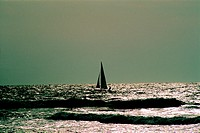 Sailing boat near the Dubai beach, UAE