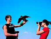 Western tourist taking pictures of a captured falcon, United Arab Emirates