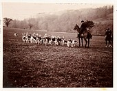 Photograph by Frank Meadow Sutcliffe (1853-1941) of two huntsmen on horses with a pack of eager hounds. Sutcliffe is best known for his naturalistic a...