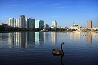 Orlando skyline from Lake Eola