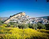 10513393, Andalusia, flower meadow, hill, Montefrio, Spain, Europe, town, city,