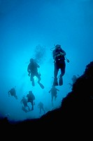 View looking back at a train of divers descending down the Blue Hole, Lighthouse Reef Atoll, Belize, Caribbean Sea
