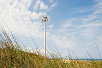 For sale sign near the coast (thumbnail)