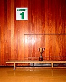 Trophy in sport court