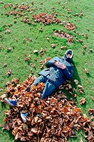 Man sleeping on leaves