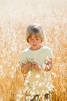 Boy in a field of wheat