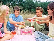 Friends having a picnic