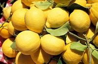 lemons basket, taormina, italy