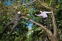 Businesspeople in a tree