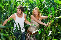 Couple in a corn plant field