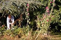 Gardening. Dordogne. France.