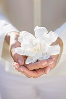Woman Holding Delicate Gardenia in Palms