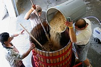 Domaine Berrien Cellars, grape press, wine, workers, adding rice hulls. Berrien Springs. Michigan. USA.