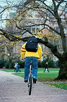 Man riding bicycle on university campus, rear view