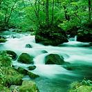 Japan, Aomori Prefecture, Towadako, Oirase River (long exposure)