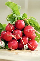 Organic Radish just washed ready to be served