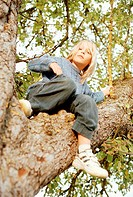 Boy (6-8) sitting in tree, portrait, low angle view