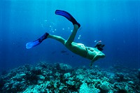 Young woman snorkelling in sea, underwater, rear view