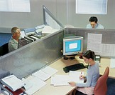 One female and two male colleagues working at partition desks