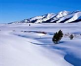 Stanley Basin, Idaho