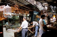 asia, hong kong, kowloon, hong lok street, birds market